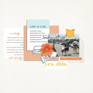 Ready Set Go Papers, Elements, and Journal Cards by One Little Bird