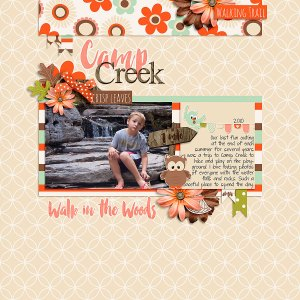 Autumn Woodlands Elements by River~Rose Autumn Woodlands Papers by River~Rose Autumn Woodland Alphas by River~Rose Autumn Woodlands Pocket Cards by River~Rose September 2015 Templates by Sahin Designs