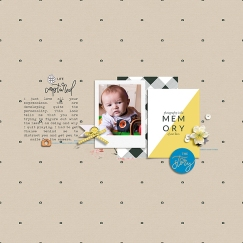 Portraits Collection by Sahin Designs Quick Scraps Vol 8 by Anita Designs