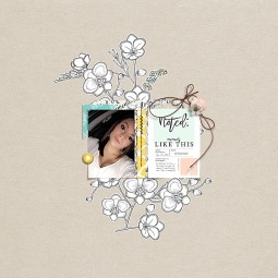 Recorded Bundle by Sahin Designs January 2016 Layout Templates by Sahin Designs