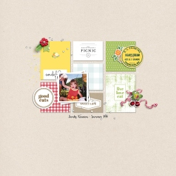 Picnic Day Bundle by Sahin Designs Blockbuster Templates by Sahin Designs and Jimbo Jambo Designs