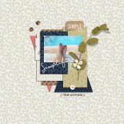 Simplify Elements by Amber LaBau Simplify Papers by Amber LaBau 2016 DSD Grab Bag by Sara Gleason and Crystal Livesay