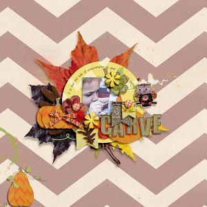 Credits: Middlemost by Little Green Frog Hootie Cutie by Tracy Martin Hootie Cutie Facebook Freebie Paper Hootie Cutie Newsletter Freebie Paints