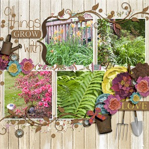 Fuss Free: My Scrapbook Art 2 by Fiddle-Dee-Dee Garden View by Etc by Danyale