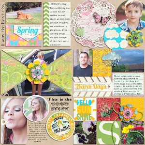 Capture 2014: 4x6 Collage Cards Capture 2014: Springtime  by Cluster Queen Creations