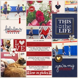 Pocket Life '15: February Collection by Traci Reed 365Unscripted: Plastic Stitched Grids Bundle by Traci Reed