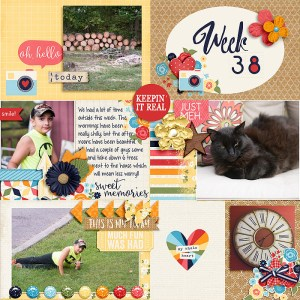 Week 38 Pocket Life '15 - September Collection by Traci Reed