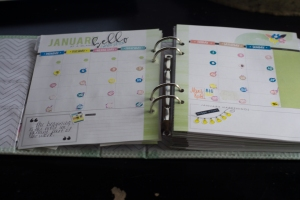 Using Story Planner 2016 January Collection by Just Jaimee