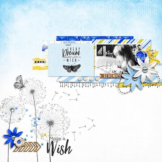 Make-a-Wish-600
