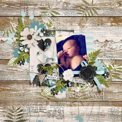 Beautiful World Collection by River~Rose, I'll Be There Templates by Crystal Livesay