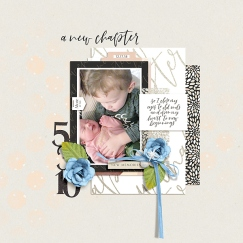 Chapters Papers by Sahin Designs Chapters Elements by Sahin Designs Chapters Cards by Sahin Designs Sparkle and Shine {Dressed Down} by Fiddle-Dee-Dee Designs