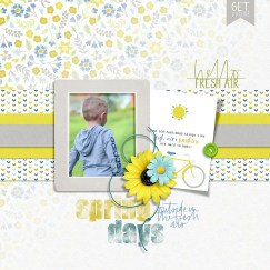 Digiscrap Parade Contributions from KimB and Dawn by Design